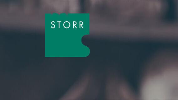 Storr